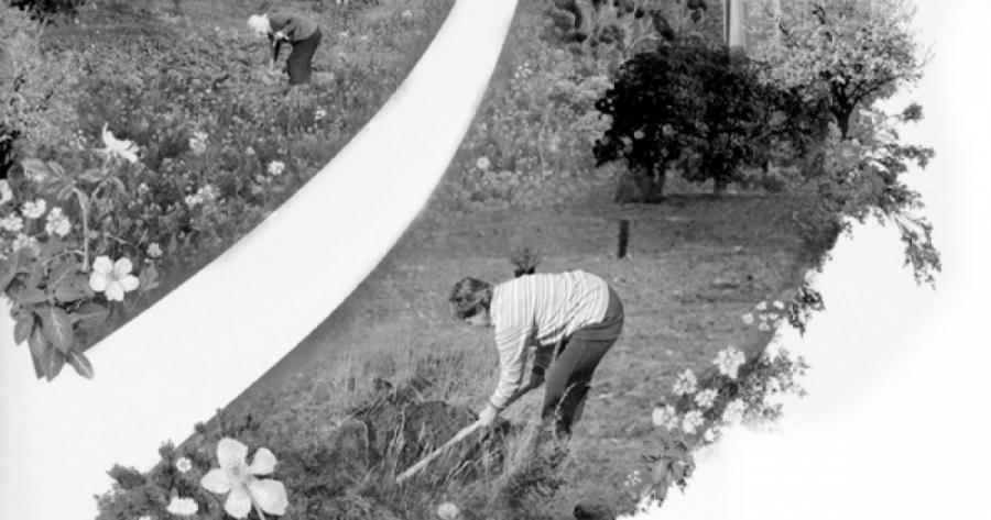 CONATURE 2: Plantación Bosque Literario Urbano